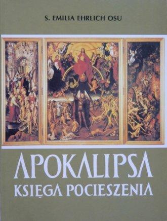 Apokalipsa. Księga pocieszenia - okładka książki