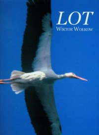 Lot - okładka książki