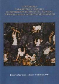 Gospodarka nad Przemszą i Brynicą od pradziejów do początku XX wieku w świetle badań interdyscyplinarnych - okładka książki