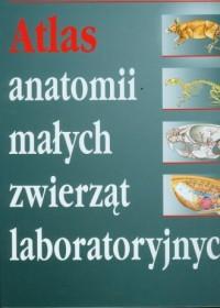 Atlas anatomii małych zwierząt laboratoryjnych - okładka książki