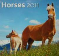 Kalendarz Horses 2011 - okładka książki