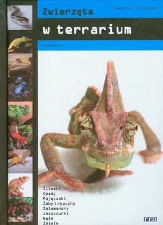 Zwierzęta w terrarium - okładka książki