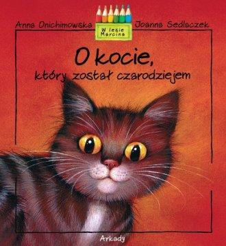 O kocie który został czarodziejem - okładka książki