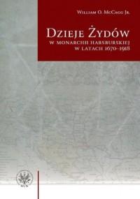 Dzieje Żydów w monarchii habsburskiej - okładka książki