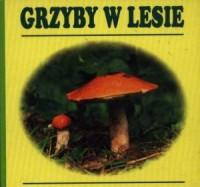 Grzyby w lesie - Wydawnictwo - okładka książki