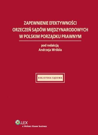 Zapewnienie efektywności orzeczeń - okładka książki