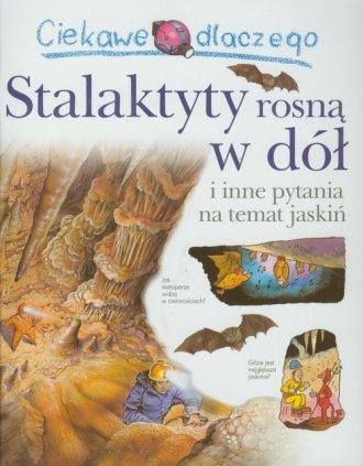 Ciekawe dlaczego stalaktyty rosną - okładka książki