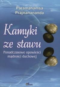 Kamyki ze stawu. Ponadczasowe opowieści mądrości duchowej - okładka książki