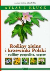 Rośliny zielne i krzewinki Polski - rośliny pospolite, częste. Atlas i klucz - okładka książki