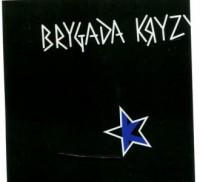 Brygada Kryzys (CD audio) - okładka płyty