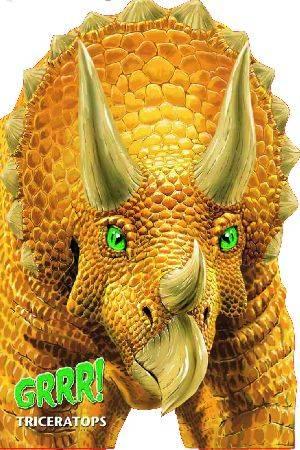 Grrr! Triceratops - okładka książki