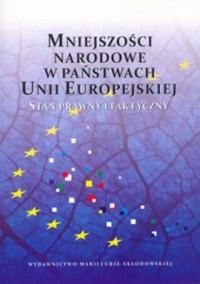 Mniejszości narodowe w państwach - okładka książki