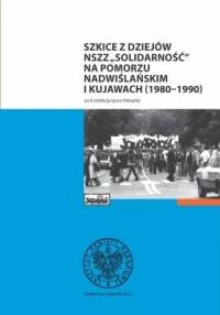 Szkice z dziejów NSZZ Solidarność na Pomorzu Nadwiślańskim i Kujawach (1980-1990) - okładka książki
