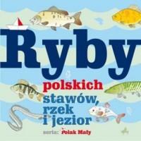 Ryby polskich stawów rzek i jezior. Seria: Polak mały - okładka książki