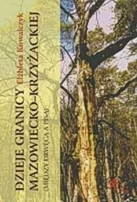 Dzieje granicy mazowiecko-krzyżackiej (między Drwęcą a Pisą) - okładka książki