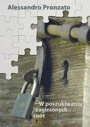 W poszukiwaniu zaginionych cnót - okładka książki