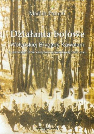 Działania bojowe Wołyńskiej Brygady - okładka książki