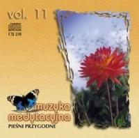 Muzyka medytacyjna vol. 11. Pieśni przygodne - okładka płyty