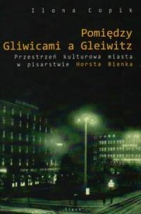 Pomiędzy Gliwicami a Gleiwitz. Przestrzeń kulturowa miasta w pisarstwie Horsta Bienka - okładka książki