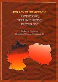 Polacy w Niemczech: przeszłość, teraźniejszość, przyszłość - okładka książki