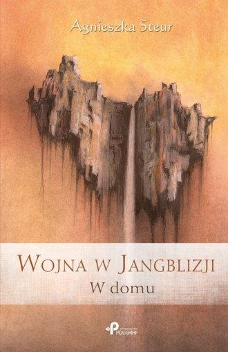 Wojna w Jangblizji. W domu - okładka książki