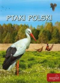Ptaki Polski - okładka książki