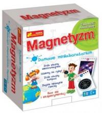 Magnetyzm. Domowe minilaboratorium - zdjęcie zabawki, gry