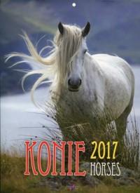 Kalendarz 2017. Konie - okładka książki