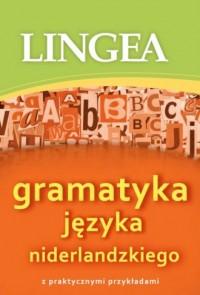 Gramatyka języka niderlandzkiego z praktycznymi przykładami - okładka podręcznika