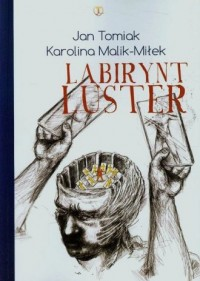 Labirynt luster - okładka książki