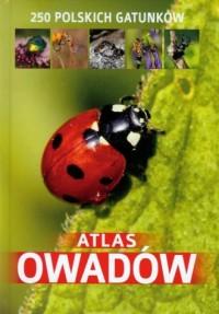Atlas owadów. 250 polskich gatunków - okładka książki