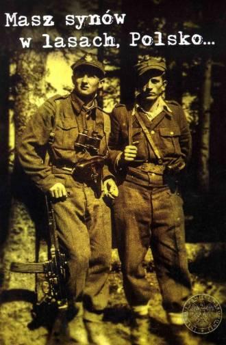 Masz synów w lasach, Polsko... - okładka książki