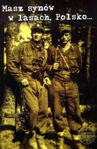 Masz synów w lasach, Polsko... Podziemie niepodległościowe i opór społeczny na Sądecczyźnie w latach 1945-1956 - okładka książki