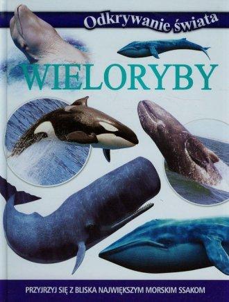 0393a6f174c34a Wieloryby. Odkrywanie świata - Olesiejuk | Księgarnia internetowa ...
