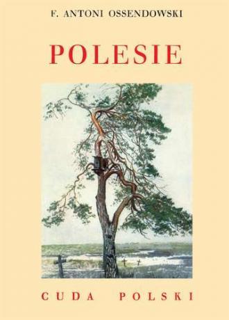 Polesie. Cuda Polski - okładka książki