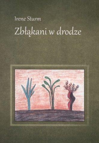 Zbłąkani w drodze - okładka książki
