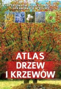 Atlas drzew i krzewów - Aleksandra Halarewicz - okładka książki