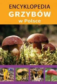 Encyklopedia grzybów w Polsce - okładka książki