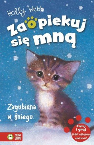 Zagubiona w śniegu - okładka książki