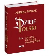 Dzieje Polski. Tom 2. 1203-1340. - okładka książki