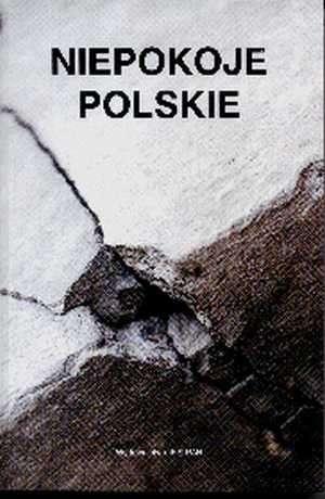 Niepokoje polskie - okładka książki