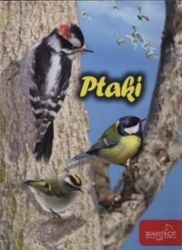 Ptaki - okładka książki