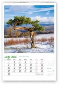 Kalendarz 2016. Pejzaże polskie - okładka książki