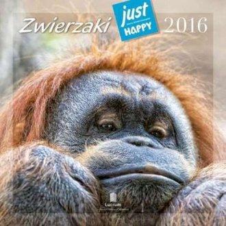Kalendarz praktyczny 2016. Zwierzaki - okładka książki