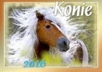 Kalendarz rodzinny 2016. Konie - okładka książki