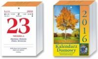 Kalendarz 2016. Kalendarz domowy - okładka książki