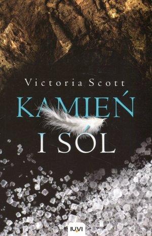 Kamień i sól - okładka książki