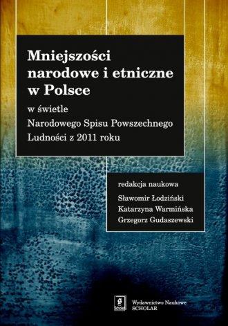 Mniejszości narodowe i etniczne - okładka książki