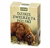 Dzikie zwierzęta Polski. Karty - zdjęcie zabawki, gry