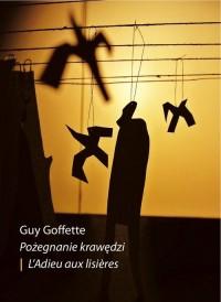 Pożegnanie krawędzi - okładka książki